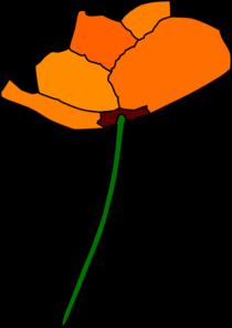 california-poppy-md